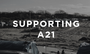 Supporting A21