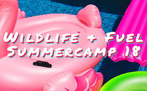 WL&Fuel Summer Camp