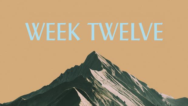 100 Days of Ascent: Week Twelve