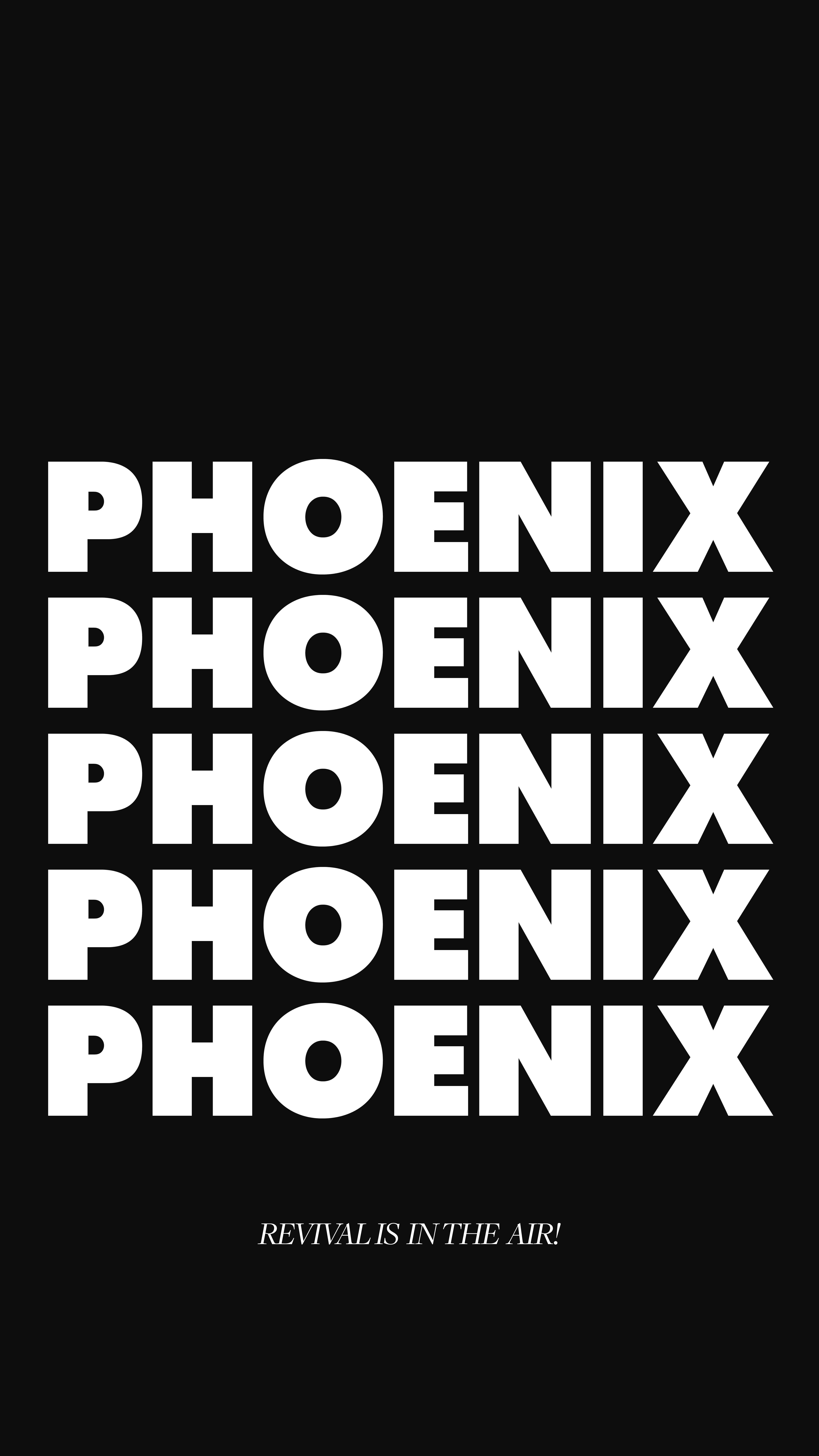 VS19 Phoenix