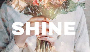 Shine Training Day