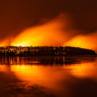Global Bushfire Appeal